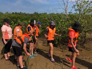 CSR Mangrove Replanting (2)