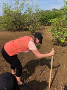 CSR Mangrove Replanting (3)