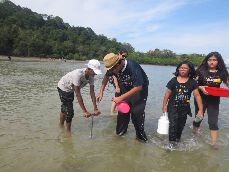 Marine Biology Beach walk (1)