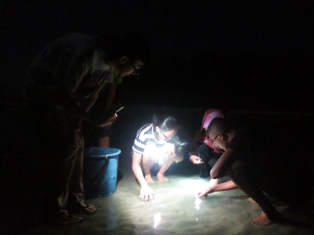 Night Crabbing Competition (1)