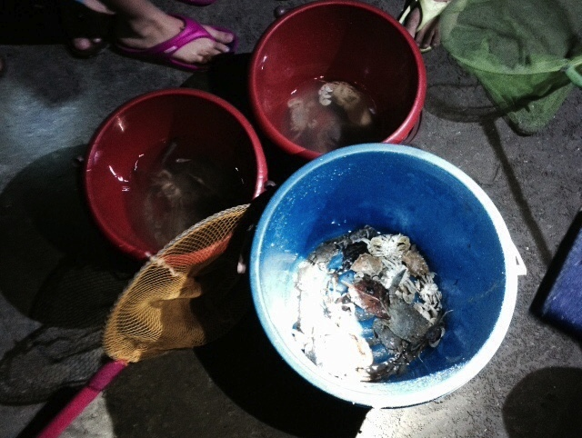Night Crabbing Competition (2)
