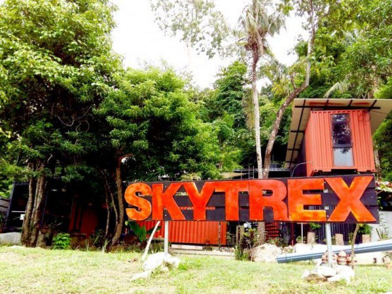 Skytrek-camp-e1494887673227-800x600