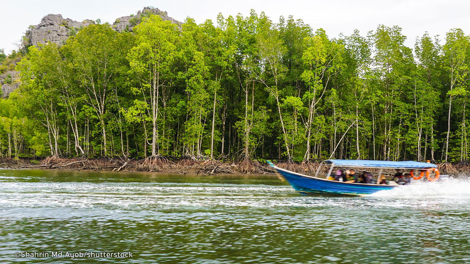 langkawi-mangrove.jpg